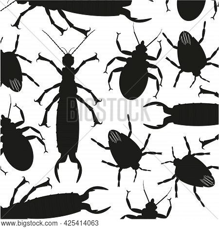 Silhouettes Insect On White Background Is Insulated