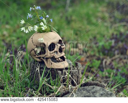 Skull With Flowers For Beltane Magic Ritual In Spring Outside.  Esoteric, Gothic And Occult Backgrou