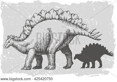 Dinosaur Stegosaurus Grafic Hand Drawn And Silhouette Illustration. Animal Vector Drawing Isolated O