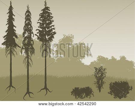 Bush And Tree Set
