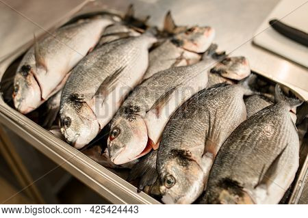 Close-up Of Several Fish Lying In A Row On A Metal Tray