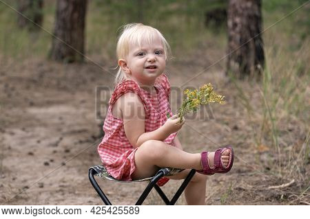 Blonde Girl Sitting On Chair With Flower In Hands In Forest. Happy Child On The Field With Wildflowe