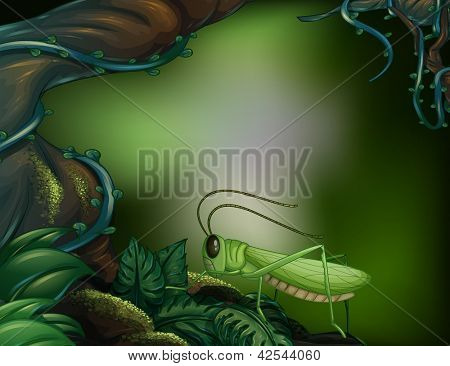 Illustration of a grasshopper in the forest