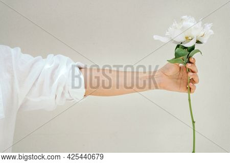 Woman holding a peony snow board