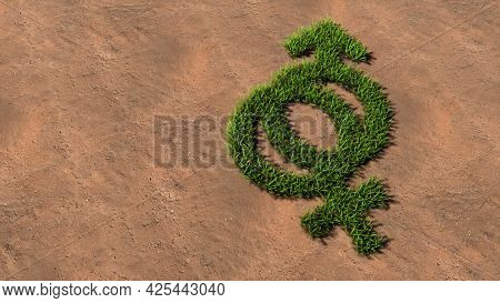 Concept conceptual green summer lawn grass symbol shape on brown soil or earth background, gender signs. A 3d illustration metaphor for heterosexual relationships, couples, romance and family