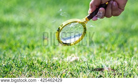 Science Experiments. Learn To Combine The Sun's Rays With Magnifying Glass. Human Hand Holding Golde
