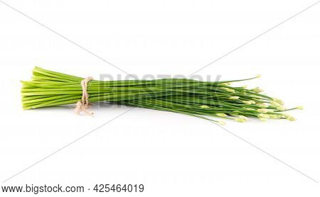 Chinese Chives Flower On A White Background