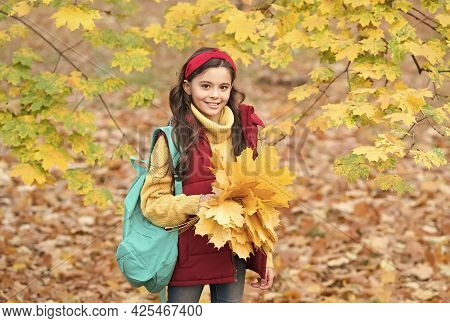 What A Beauty. Teen Girl Carry Backpack On Way To School. Child Walk In Autumn Forest Or Park. Fall
