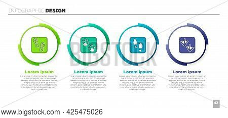 Set Human Footprints Shoes, Paw, And Goose Paw. Business Infographic Template. Vector