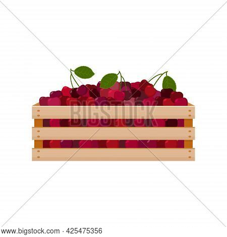 A Bright Summer Illustration Depicting A Wooden Box With Red Ripe Cherries And Green Leaves. The Har