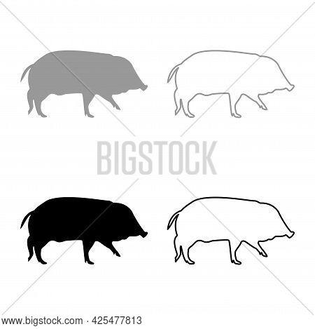 Wild Boar Hog Wart Swine Suidae Sus Tusker Scrofa Silhouette Grey Black Color Vector Illustration So