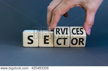 Services Sector Symbol. Businessman Turns Cubes With Words Services Sector. Beautiful Grey Backgroun