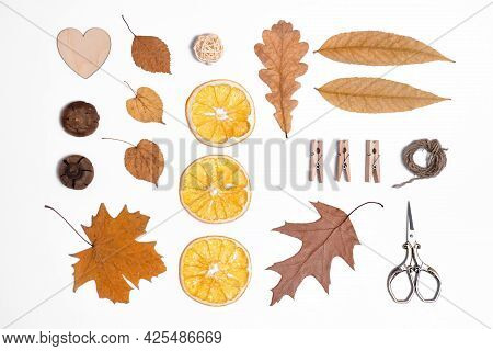 Autumn Layout With Fallen Leaves And Fruits, Rustic Style, Leaf Fall Background, Natural Items For D