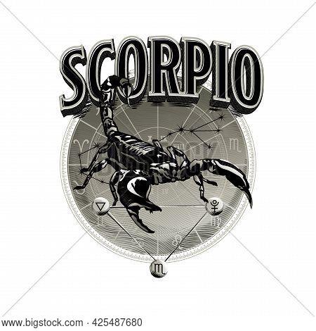 Astrological Vector - Hand Drawn Romantic Beautiful Line Art Of Zodiac Scorpio. Illustration Isolate