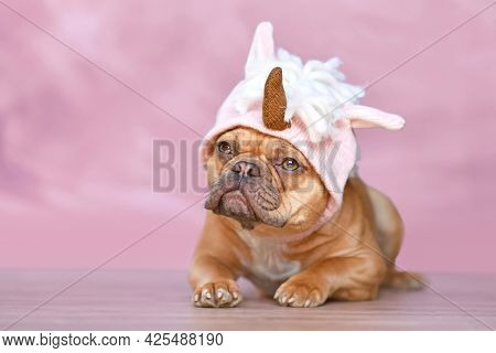 Red French Bulldog Dog With Wearing A Funny Knitted Pink Unicorn Hat Costume In Front Of Pink Backgr