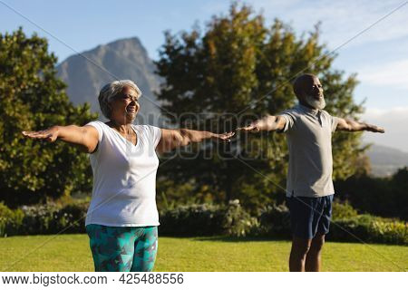 Senior african american couple practicing yoga in stunning countryside retreat. retirement and active senior lifestyle concept.