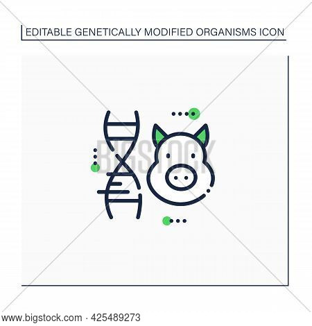 Pig Line Icon. Genetically Modified Pig Meat. Gmo Product. Inorganic Food. Genetically Modified Orga