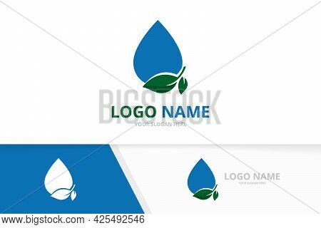 Fresh Water Drop Logo. Droplet And Leaves Logotype Design Template.