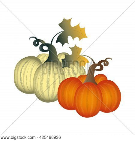Realistic Round Flat Art Pumpkins In Off-white An Bright Orange Colors With Stems And Leaves.