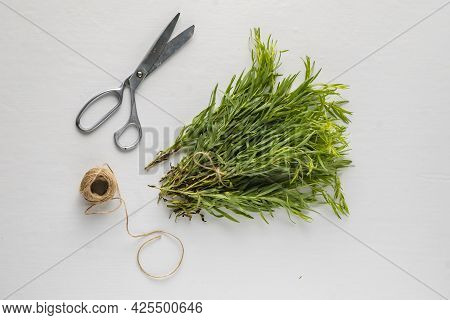 Bunch Of Aromatic Tarragon On The Table, Aromatic Herb For Cooking, Special Ingredient