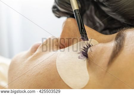The Master Paints The Clients Eyelashes In A Beauty Salon. Eyelash Care Treatment Procedures. Woman