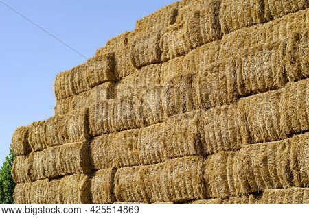 Rectangular Stacks Of Dry Hay In An Open-air Field. Storage Of Dry Herbs For Feeding Cows And Other