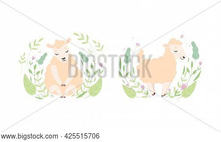 Cute Sheep In Flowers Set, Adorable Little Fluffy Lamb Farm Animal In Pastel Colors Cartoon Vector I
