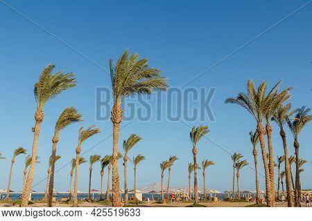 Sharm El Sheikh, Egypt - June 2, 2021: View On A Beach Of Hotel Albatros Laguna Vista Resort In Shar