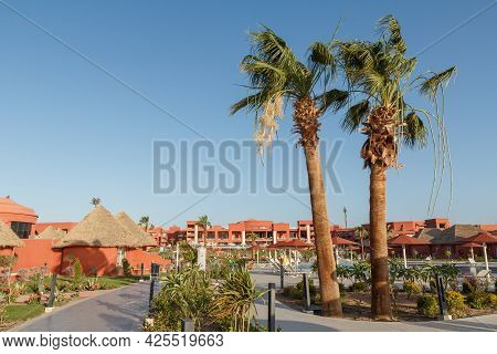 Sharm El Sheikh, Egypt - June 3, 2021: Palm Trees Growing At Hotel Albatros Laguna Vista Resort In S