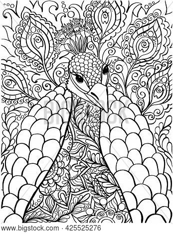 Peacock Coloring Book Page. Antistress Coloring Pages For Adults