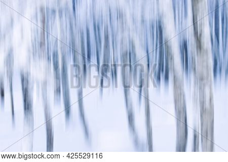 Motion Blur Dreamy Forest In Winter With Snow