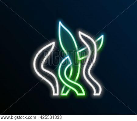 Glowing Neon Line Seaweed Icon Isolated On Black Background. Underwater Seaweed Spirulina, Aquatic M