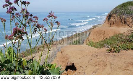 Seascape Vista Point, Viewpoint In Del Mar Near Torrey Pines, California Coast Usa. Frome Above Pano