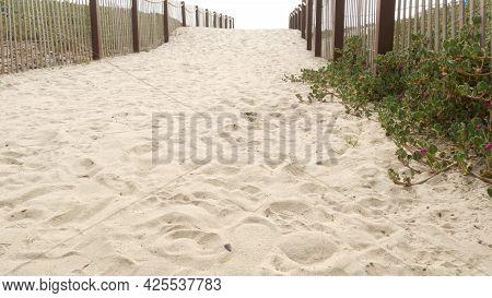 Wooden Picket Fence, Sandy Misty Beach, Encinitas California Usa. Pacific Ocean Coast, Dense Fog On