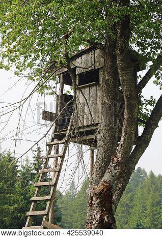 Little Hut Used By Hunters To Blend In And Shoot Birds Without Being Seen
