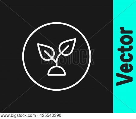 White Line Plant Based Icon Isolated On Black Background. Vector