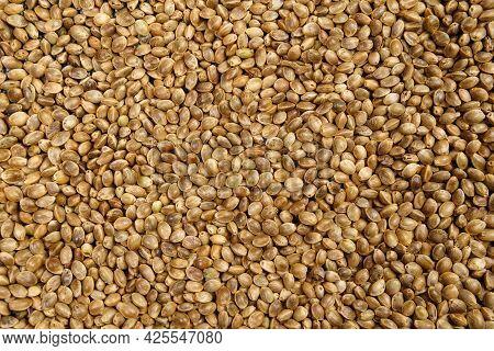 Texture Background Of Cannabis Seeds Cannabis Medical Marijuana Concept