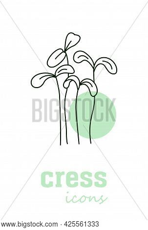 Garden Cress Vector Icon. Vegetable Green Leaves. Greenery. Culinary Herb Spice For Cooking, Medical