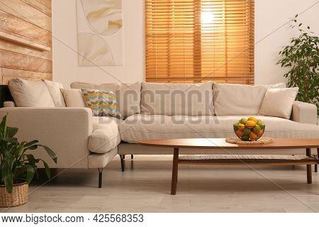 Stylish Living Room Interior With Modern Comfortable Sofa And Plants