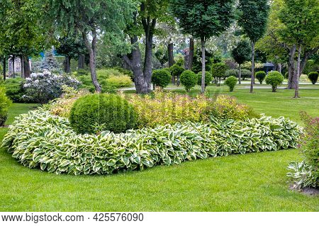 A Flower Bed With Bushes And Flowers Surrounded By Leaves Landscaping A Garden With Plants For A Bac