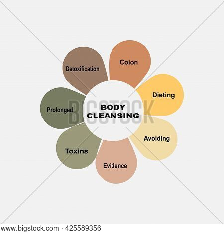 Diagram Concept With Body Cleansing Text And Keywords. Eps 10 Isolated On White Background