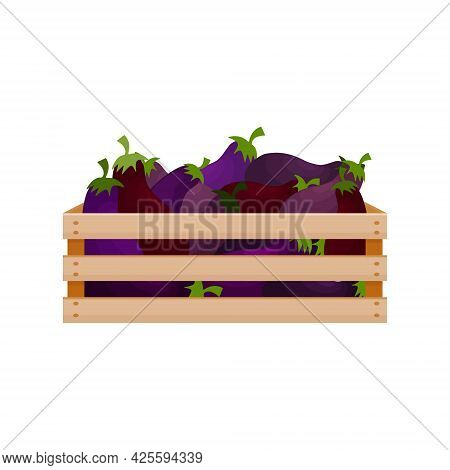 Bright Autumn Illustration With The Image Of A Wooden Box With Eggplants A Harvest Of Fresh Eggplant