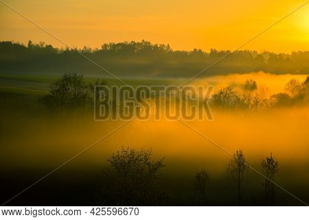 Sunlight Shining Through Mist And Trees During A Summer Sunrise. Summertime Scenery Of Northern Euro