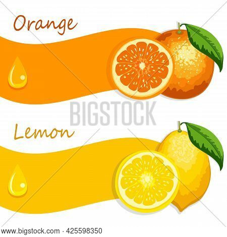 Orange And Lemon In Illustration.banner With Lemon And Orange On A White Background In Color Vector