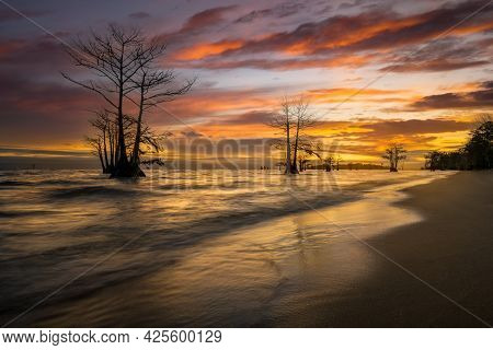 Colorful Lake Sunrise Featuring Strkiing Cypress Trees In South Carolina
