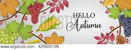 Hello Autumn Banner With Grapes, Fall Leaves And Corn Cob