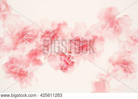 Vegetable background. Pink pion. Soft focus. Creative design for wallpaper