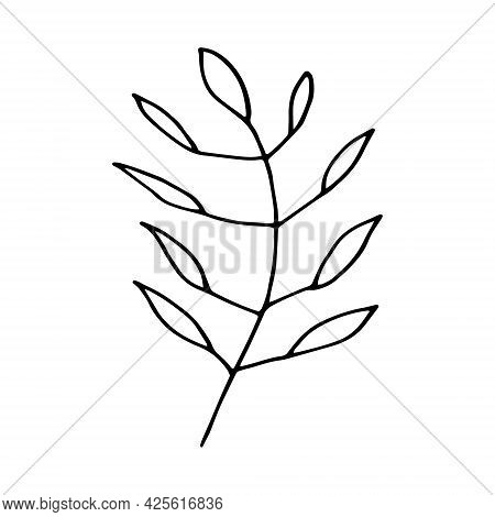 Abstract Leaves Icon. Hand Drawn Doodle. Vector, Scandinavian, Nordic, Minimalism Monochrome Plant H