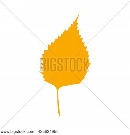 Simple Autumn Leaf, Herbal Element. Fall Orange Birch Leaf. Can Be Used As Sign, Symbol, Icon. Autum