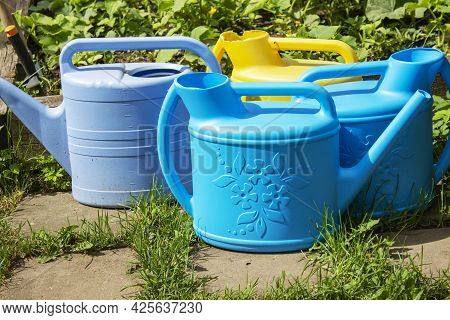Gardening On A Country Site In The Spring And Summer Season